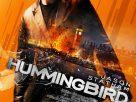 Redemption, Hummingbird, Crazy Joe (2013) | คนโคตรระห่ำ