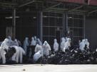 """ซ้ำเติมสถานการณ์! ไข้หวัดนกระบาดหนักใน """"มณฑลหูหนาน"""" ของจีน กำจัดสัตว์ปีกไปแล้ว 18,000 ตัว"""